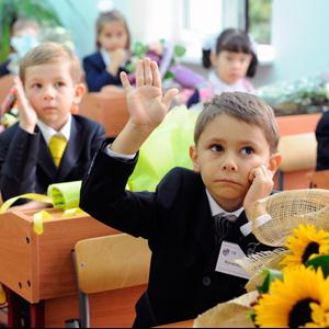 Школы Новичихи